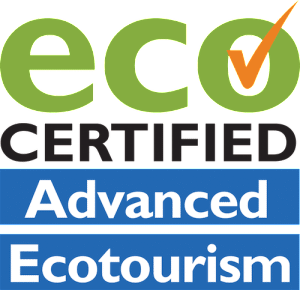 Logo for Advanced Ecotourism